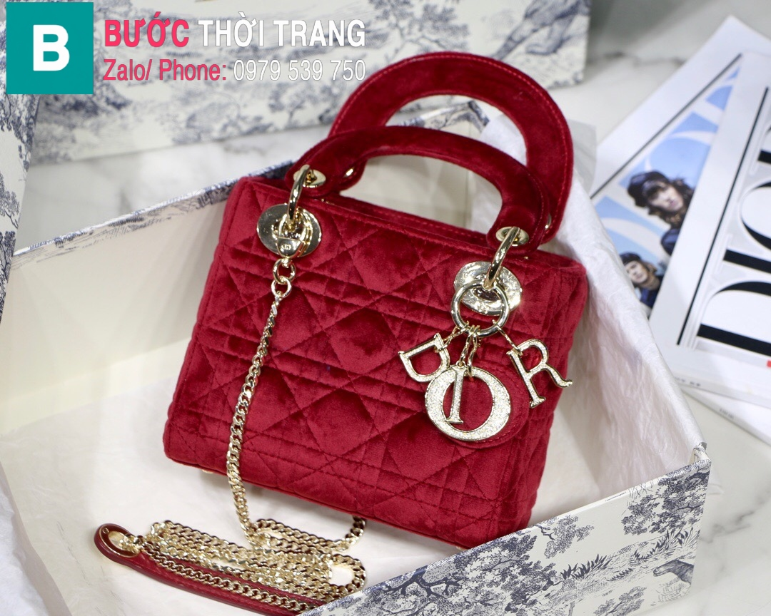 Túi xách Dior Lady Mini bag (19)