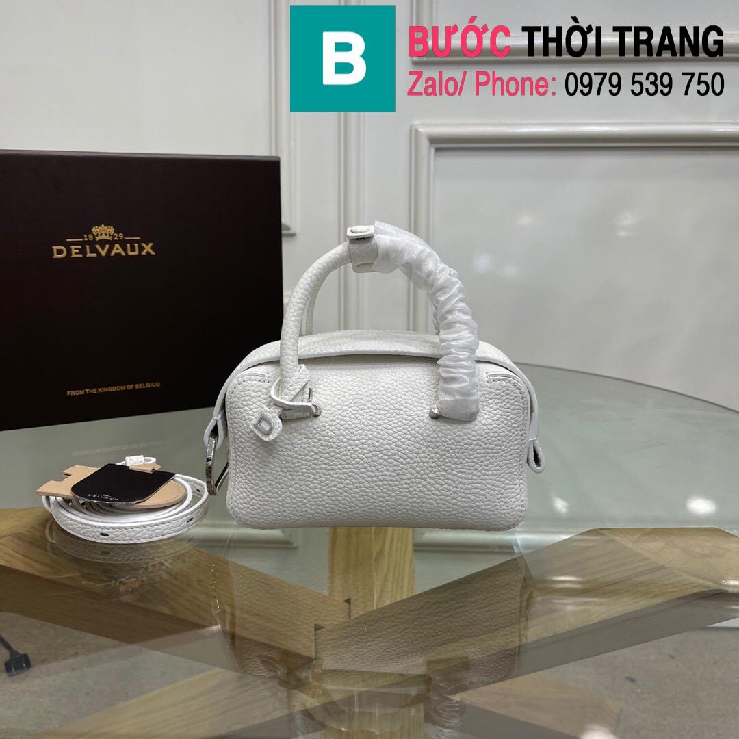Túi xách Delvaux Coolbox nano (1)