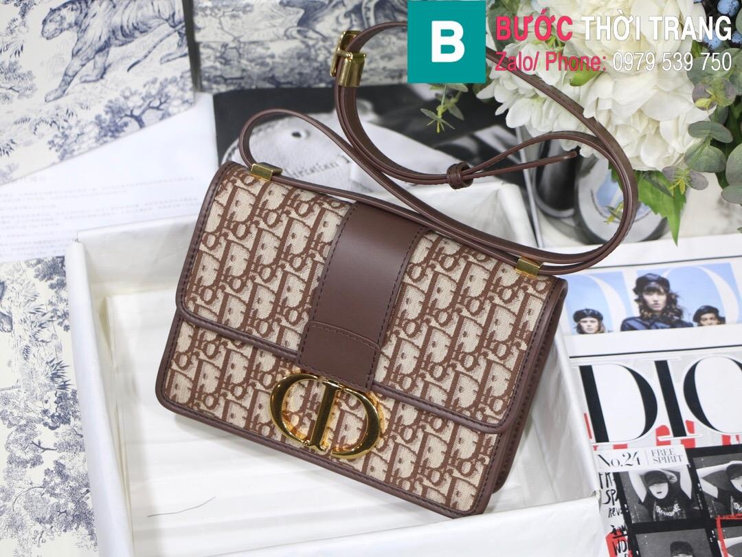 Túi xách Dior 30 Montaigne (18)